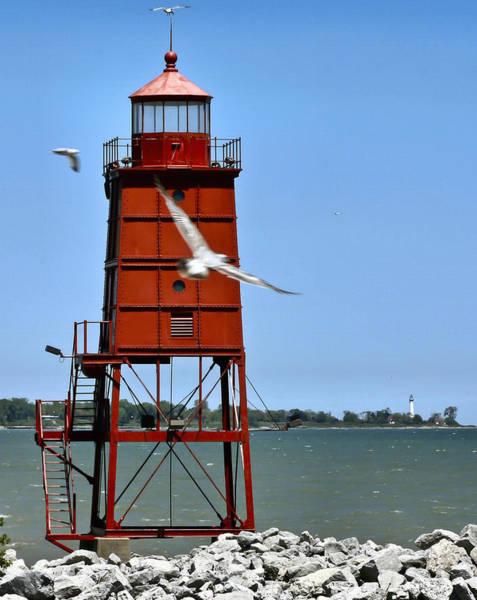 Photograph - Racine Harbor  by Ricky L Jones