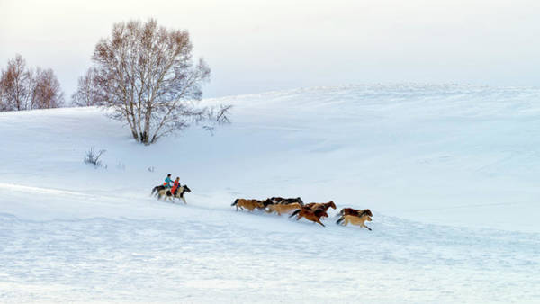 Chinese Photograph - Racing On Snow by Hua Zhu