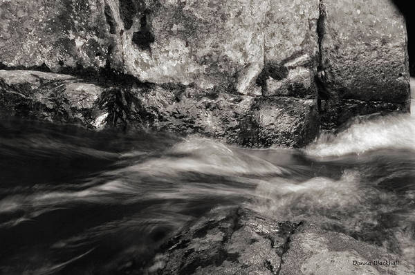 Yuba River Photograph - Racing Toward Freedom by Donna Blackhall