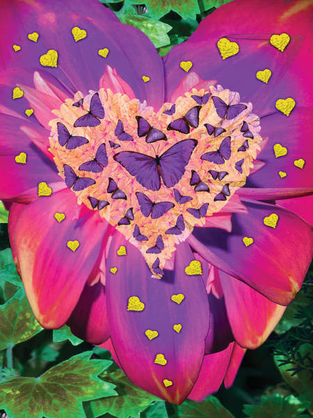 Radiant Photograph - Radiant Butterfly Heart by MGL Meiklejohn Graphics Licensing