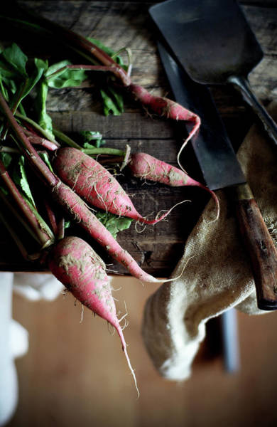 Beijing Photograph - Radishes by 200