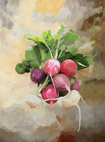 Wall Art - Painting - Radishes by Portraits By NC