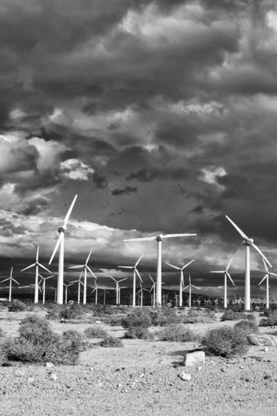 Rancho Mirage Photograph - Rage Of The Wind Palm Springs by William Dey