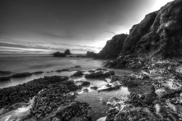 Photograph - Ragged Coast by Cliff Wassmann