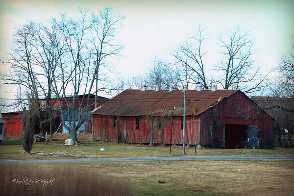 Photograph - Ragged Red Shed I by Paulette B Wright