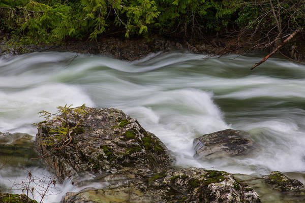 Photograph - Raging River by Randy Hall