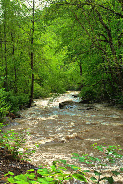 Photograph - Raging Waters - West Virginia Backroad by Paulette B Wright