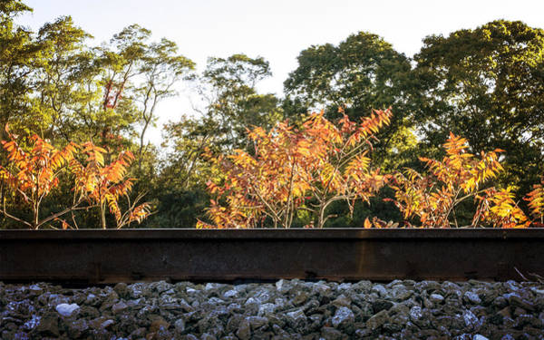 Photograph - Rail And Sun by Frank Winters