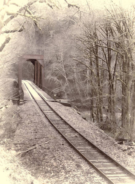 Photograph - Rail Bridge In The Woods  by HW Kateley