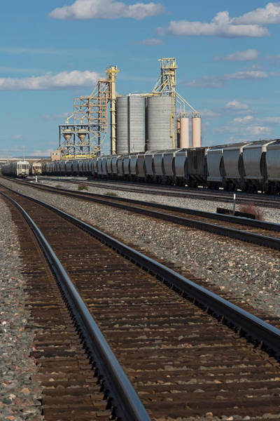 Northern Arizona Wall Art - Photograph - Rail Freight Loading Facility by Jim West/science Photo Library