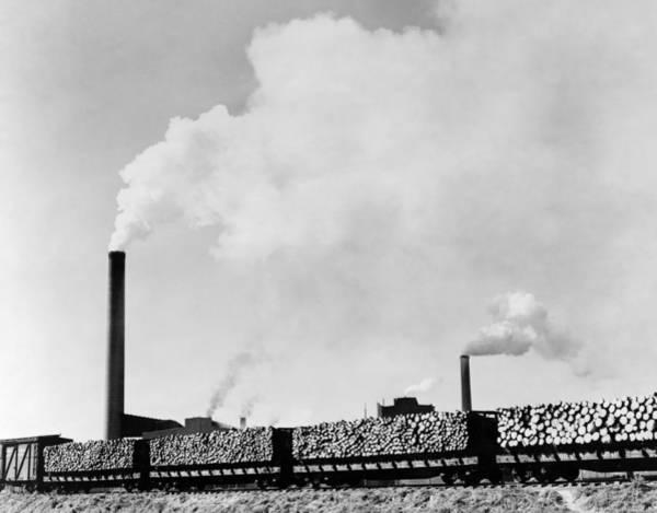 Wall Art - Photograph - Railroad Logs, C1945 by Granger