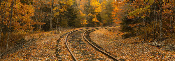 Wall Art - Photograph - Rails To Autumn by Patrick Downey