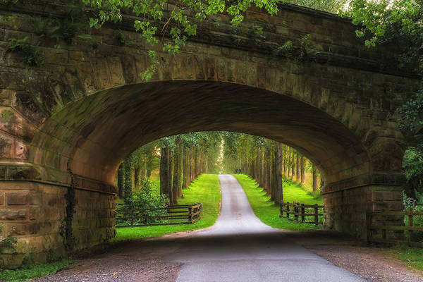 Warwickshire Photograph - Railway Bridge Leading To Tree Lined by Verity E. Milligan