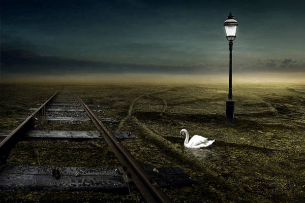 Wall Art - Photograph - Railway by Johan Lilja