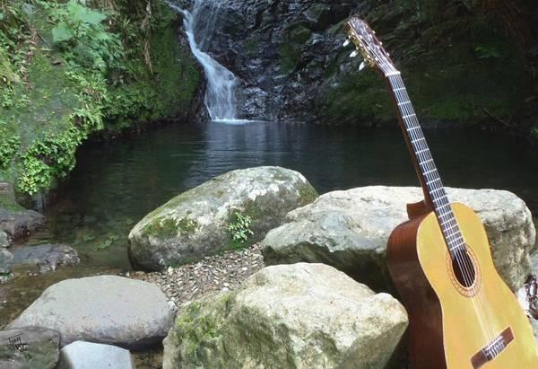 Digital Art - Rain Forest Guitar by Tony Rodriguez