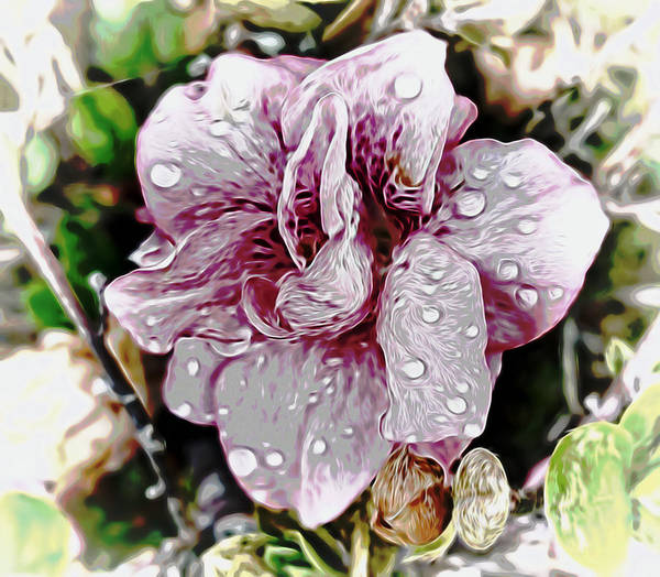 Mixed Media - Rain Showers by Pamela Walton