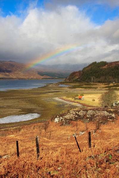 Photograph - Rainbow After The Storm by Susan Leonard