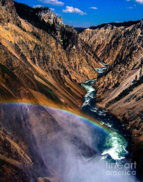 Wall Art - Photograph - Rainbow At The Grand Canyon Yellowstone National Park by Edward Fielding