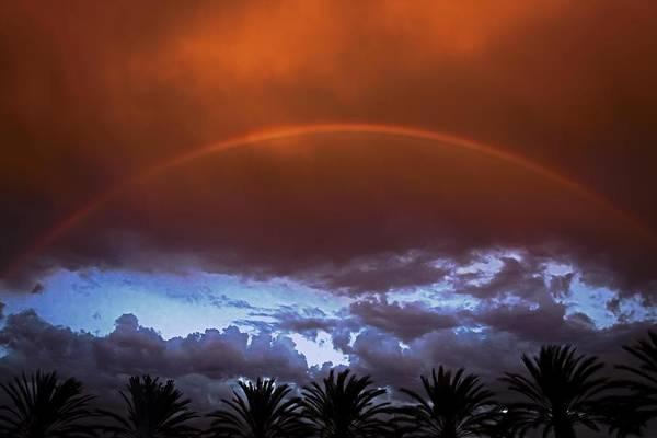 Photograph - Rainbow Crowns Long Beach Photography By Denise Dube by Denise Dube