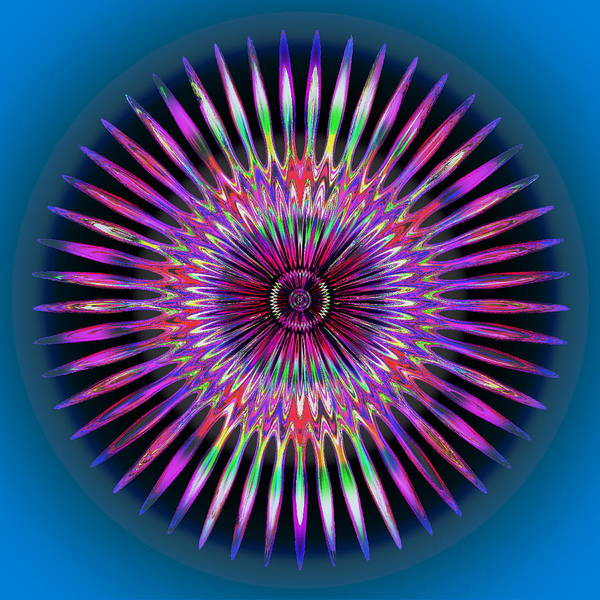Digital Art - Rainbow Flower by Visual Artist Frank Bonilla