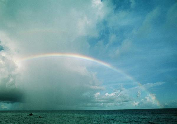 Refraction Wall Art - Photograph - Rainbow In Cloud by Matthew Oldfield/science Photo Library