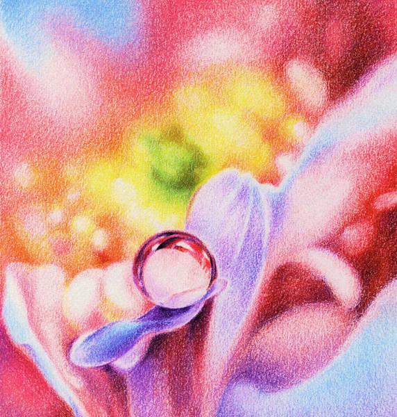 Light Blue Drawing - Rainbow by Natasha Denger