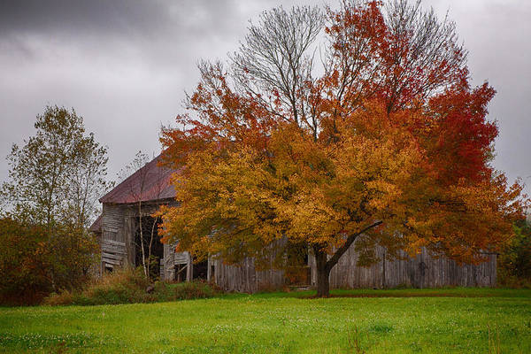 Photograph - Rainbow Of Color In Front Of Nh Barn by Jeff Folger