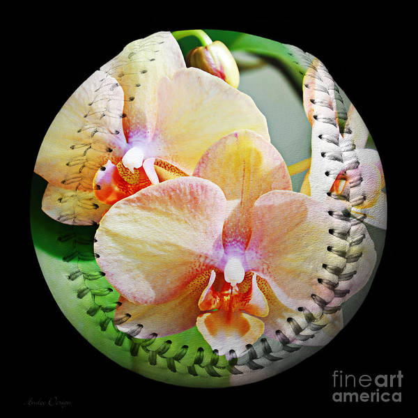 Photograph - Rainbow Orchids Baseball Square by Andee Design
