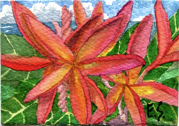 Painting - Rainbow Plumeria by Eric Samuelson