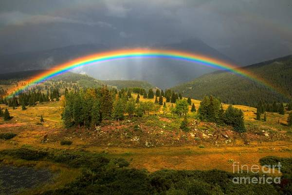 Photograph - Rainbow Through The Forest by Adam Jewell