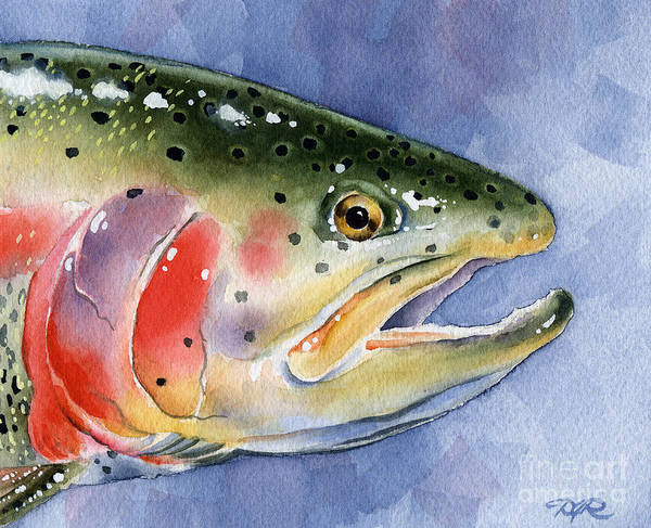 Trout Watercolor Wall Art - Painting - Rainbow Trout by David Rogers