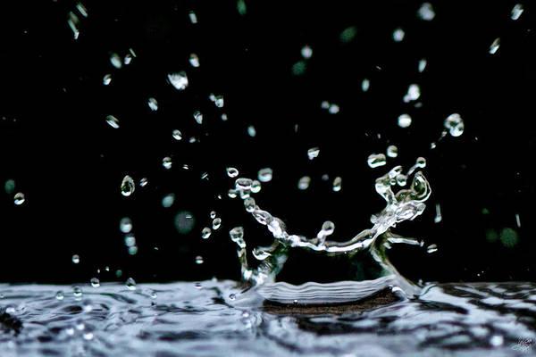 Interior Decorating Photograph - Raindrop by Lisa Knechtel