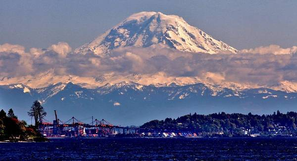 Elliot Bay Wall Art - Photograph - Rainier Looming by Benjamin Yeager