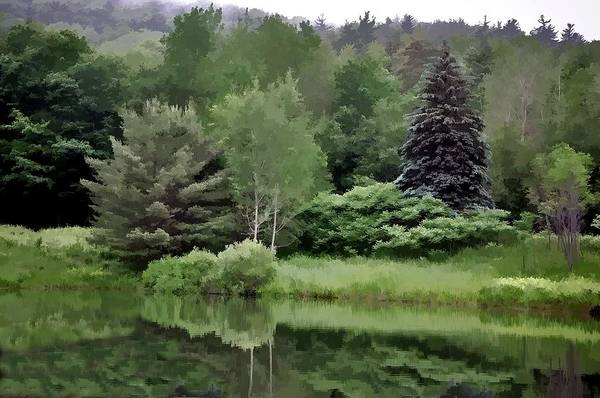 Photograph - Rainy Day At The Pond by Phyllis Meinke