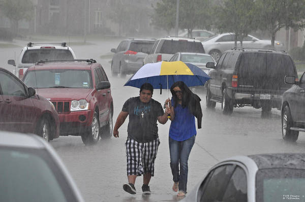 Photograph - Rainy Day Forecast by Teresa Blanton