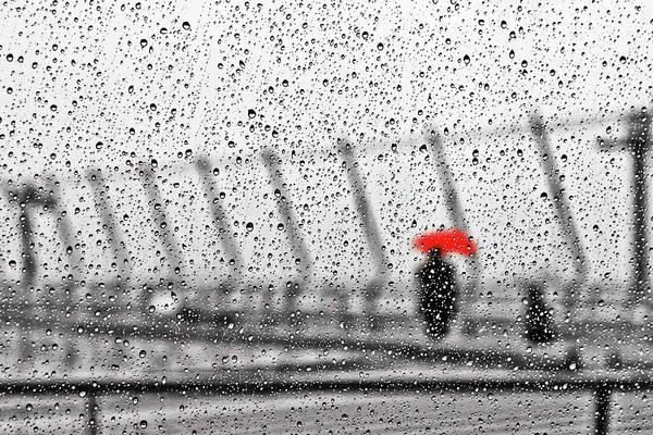 Wall Art - Photograph - Rainy Day by Keisuke Ikeda @