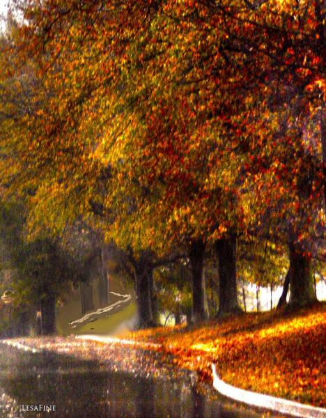 Photograph - Rainy Day Path by Lesa Fine
