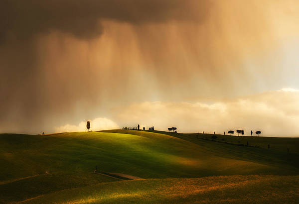 Nature Wall Art - Photograph - Rainy Sunny Toscany by Jaroslaw Blaminsky