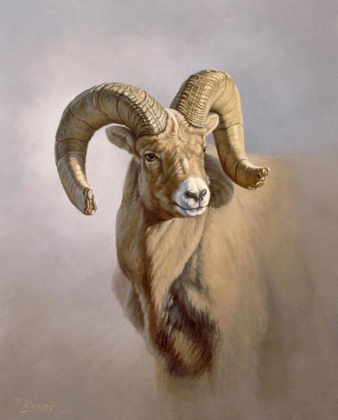 Wall Art - Painting - Ram Portrait by Paul Krapf