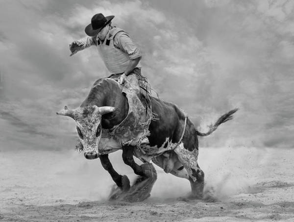 Cowboy Photograph - Ram Rodeo by Yun Wang