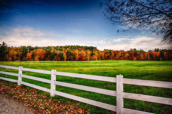 Photograph - Ramblin Fence by Robert Clifford