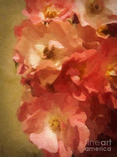 Garden Roses Digital Art - Ramblin Rose Memories by Lianne Schneider