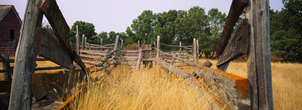 North Dakota Photograph - Ranch Cattle Chute In A Field, North by Panoramic Images