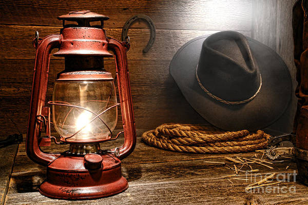Diffuse Photograph - Ranch Light by Olivier Le Queinec