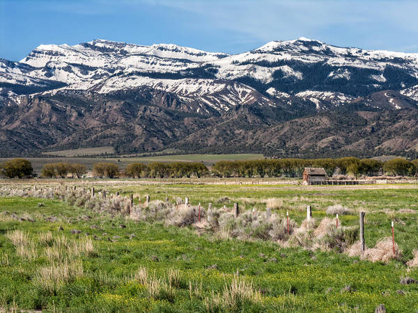Wall Art - Photograph - Ranching In Modoc by Kathleen Bishop
