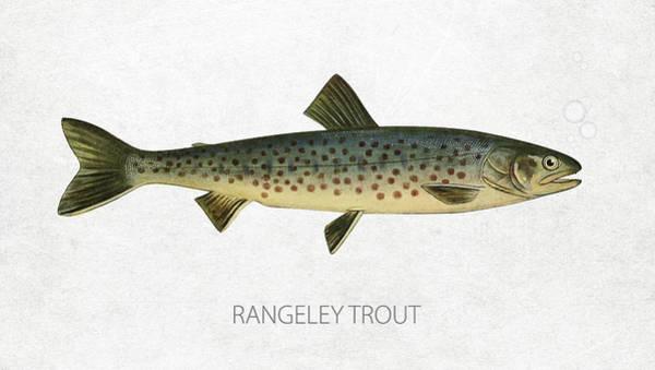 Wall Art - Digital Art - Rangeley Trout by Aged Pixel