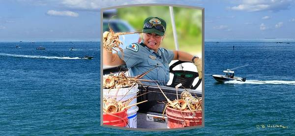 Photograph - Ranger In Mini-lobster  Season by R B Harper