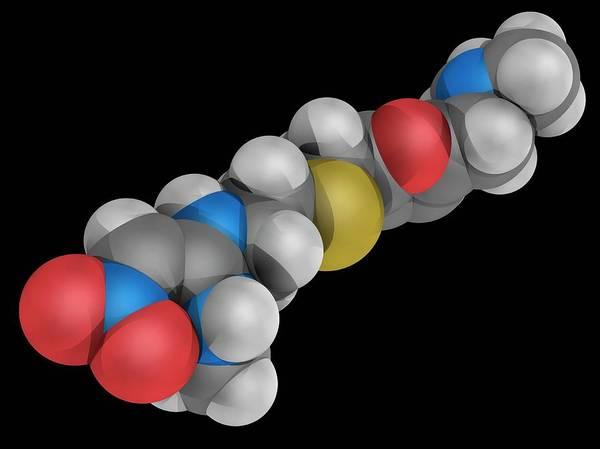 Compound Photograph - Ranitidine Drug Molecule by Laguna Design/science Photo Library