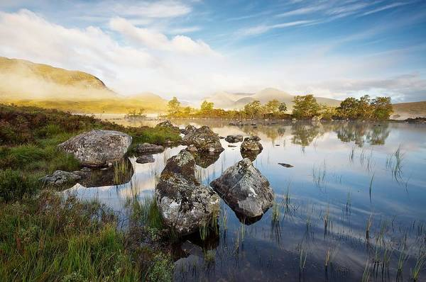 Photograph - Rannoch Moor by Stephen Taylor
