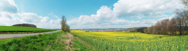 Wall Art - Photograph - Rapeseed In Field by Wladimir Bulgar/science Photo Library